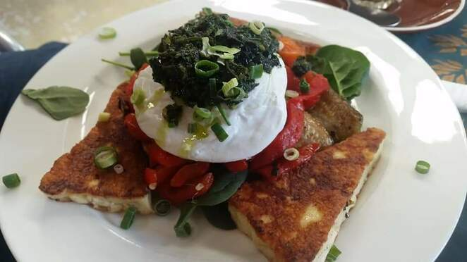 Haloumi, poached egg, lunch