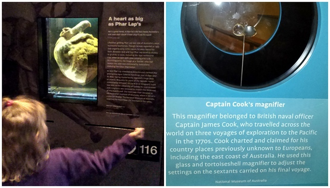 phar laps heart, captain cooks magnifier, canberra, national museum of australia, ACT, museums,