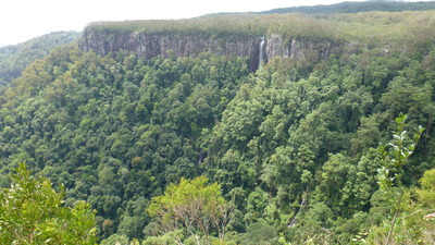 Springbrook National Park, Canyon lookout, Day trip from Brisbane, waterfalls