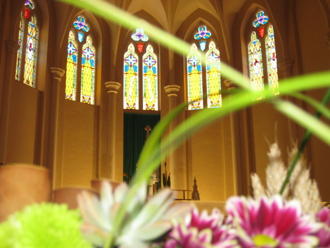St Patrick's Cathedral Toowoomba windows florwers