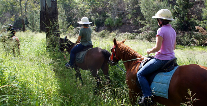 Horse riding is an experience that is great for friends, family or anyone