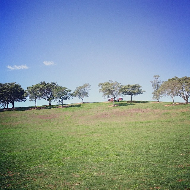 sydney park, outdoors, recreation, st peters, alexandria, nature, leisure, relax