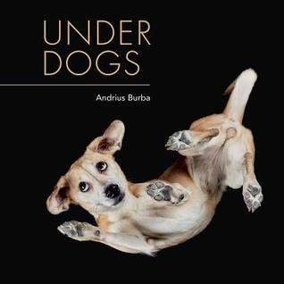 Under Dogs, photography, photography books, books about dogs, books for dog lovers, Underwater Dogs