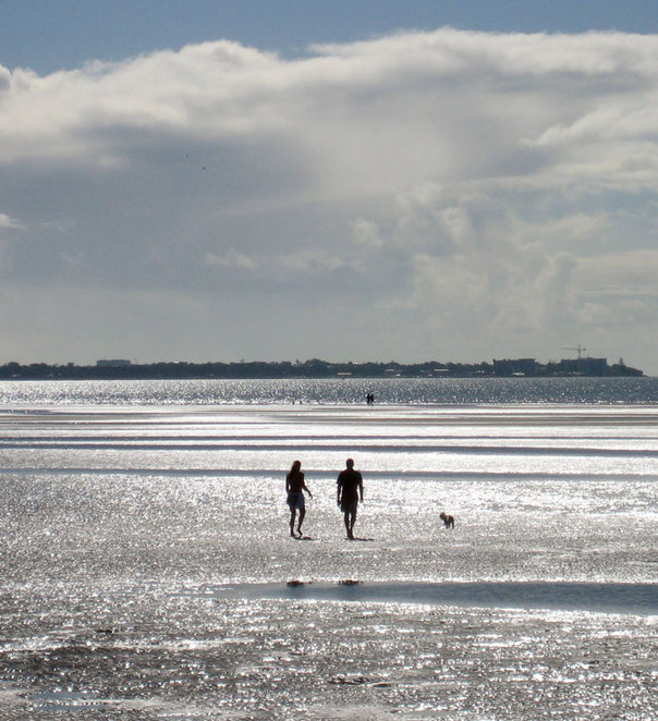 Walkers out on the mudflats at Sandgate