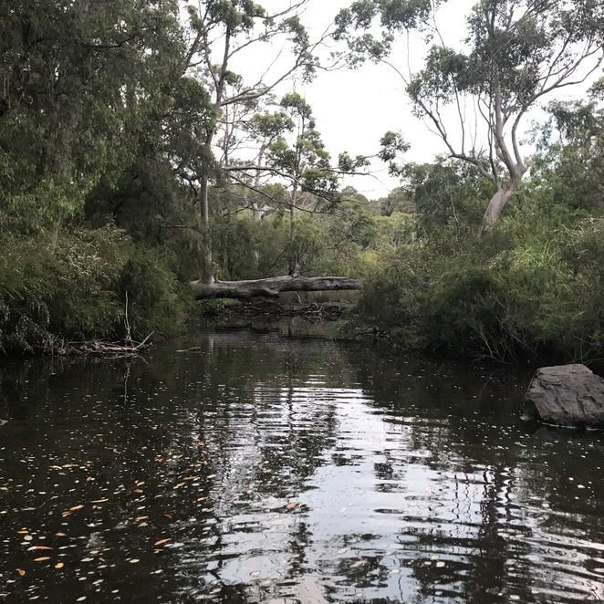 Waterfall Cottages, Margaret River