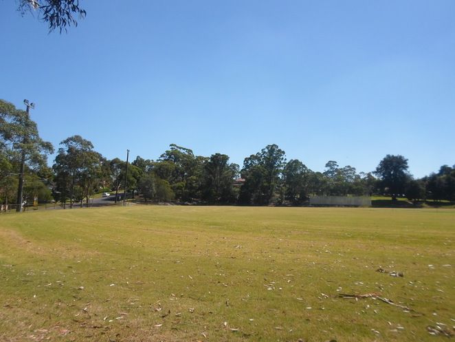 asquith oval, asquith park, asquith sportground, asquith cricket