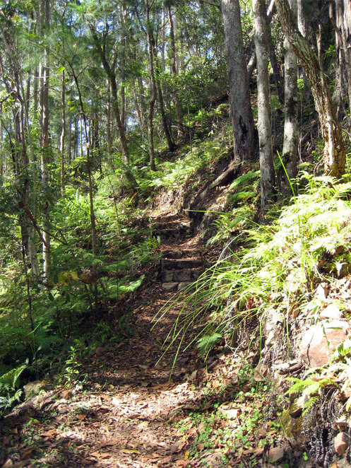 The walk up and down to the falls is fairly steep