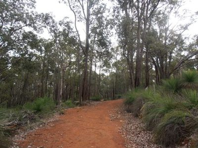 Beelu National Park, Mundaring