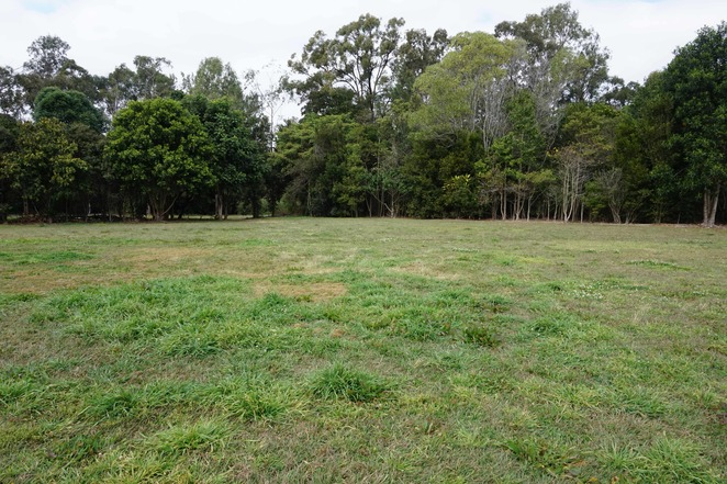 Clearing at Banks Street Reserve
