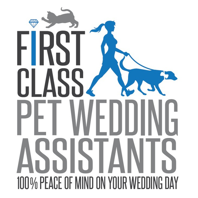 first class pet wedding assistant, brisbane, service, dog sitter, dog minder, photography, pet photography, wedding, marriage, dog friendly, dog walker, dog sitting, family, free quote, hydrobath