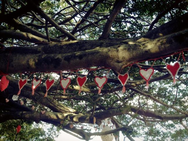 heart bunting junction park state school