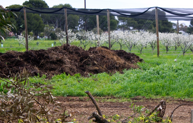 Compost, Garden Spaces and Orchards at Aldinga Eco Village