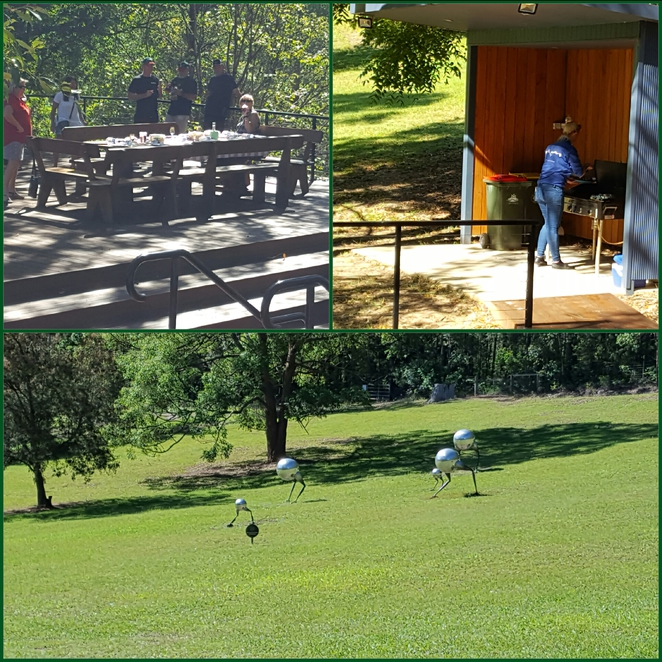 Lunch, outdoors, winery, barbecue, wine