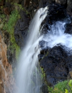 Mapleton Falls (Attribution: Department of National Parks, Recreation, Sport and Racing - Ross Naumann)