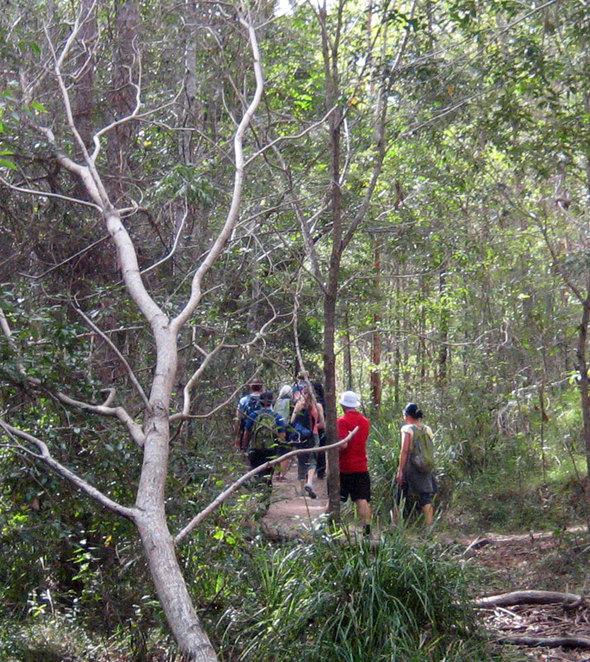 Hikers on the back trails of Mt Coot-Tha