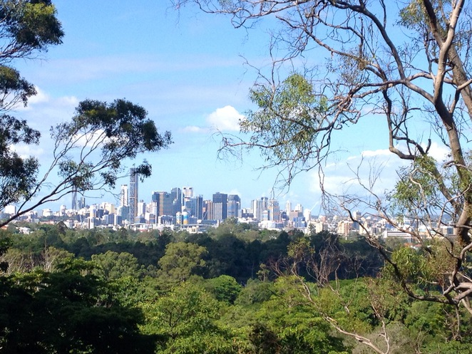 Mt Coot-tha, lookout, tourists, attraction, picnic, views, photography