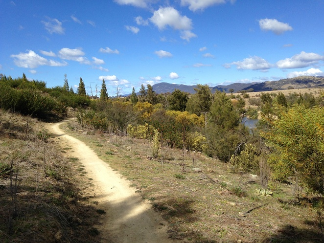 murrumbidgee river, canberra, walks, bushwalks, camping, murrumbidgee river discovery trail, murrumbidgee river corridor, ACT,