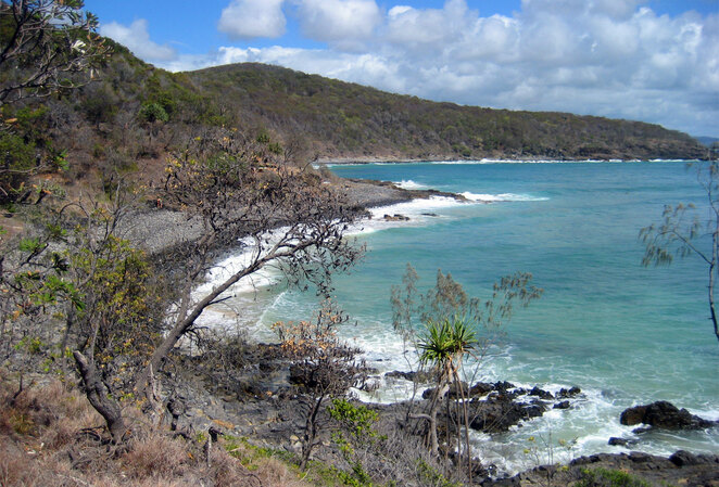 Walk along the coast and cliffs at the Noosa Heads National Park