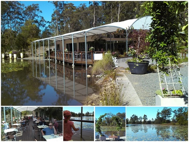 abundance, wauchope, cafes, cafes with views, water views, country views, best breakfast, lunch, kids, family friendly, turtles, rawdon island, port macquare, NSW,
