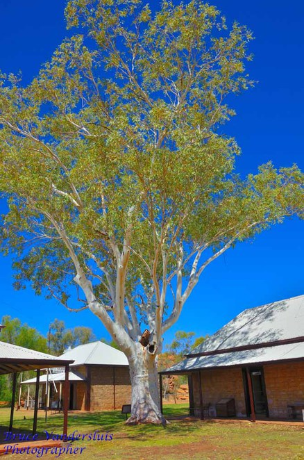 alice springs, telegraph station, overland telegraph line, northern territory, post and telegraph office