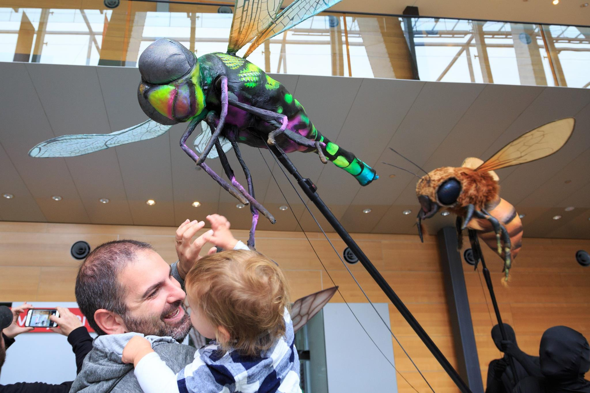 Bug Lab: Little Bugs, Super Powers at Museums Victoria - Melbourne ...