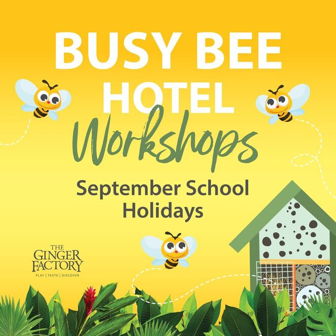 Busy Bee Hotel Workshops at The Ginger Factory, September school holiday workshops, creative, naming rights, aged 5 to 15, BYO apron or clothes, painting, crafting, the Gruffalo, Overboard Boat Ride, Moreton the Train, free entry, RACQ People's Choice Queensland Tourism Experience Awards, win gift vouchers to Repco