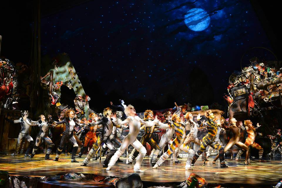 Cats the musical returns to australia sydney cats the musical stopboris Images