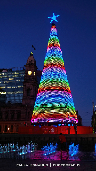 Christmas Tree, Victoria Square, Adelaide