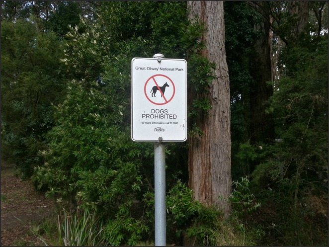 Cora Lynn Cascades, Lorne, Great Ocean Road, Otways, Blanket Leaf Picnic Area, Dogs, No dogs allowed, No dogs, No dogs sign,