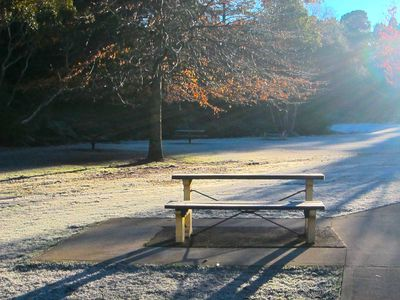Frosty park in Katoomba in July