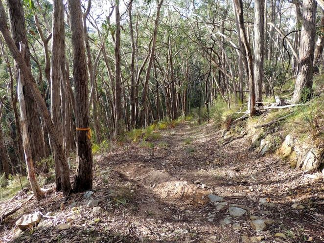 HK Fry Reserve, National Trust, National Trust of South Australia, South Australia, heritage buildings, reserve, park, crafers, crafers west, fire track