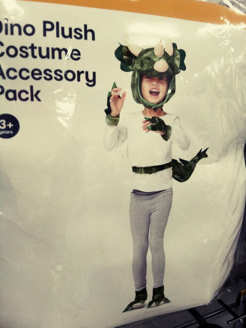 kids costumes for all occasions at Kmart