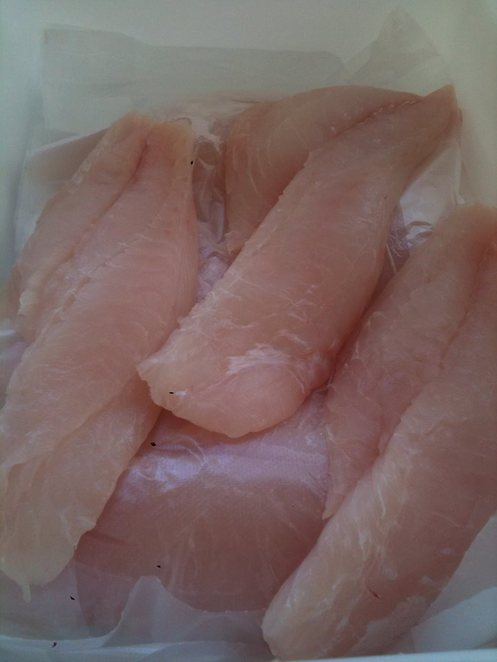 meat without feet, fresh seafood, sunshine coast, seafood monger, fish,