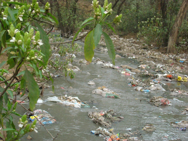 Plastic in the environment