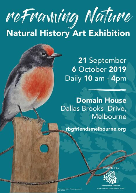 reframing nature art exhibition 2019, natural history art exhibition 2019, friends of the royal botanic gardens melbourne inc, community event, fun things to do, domain house gallery, shrine of remembrance, paintings, drawings, plant and bird life images
