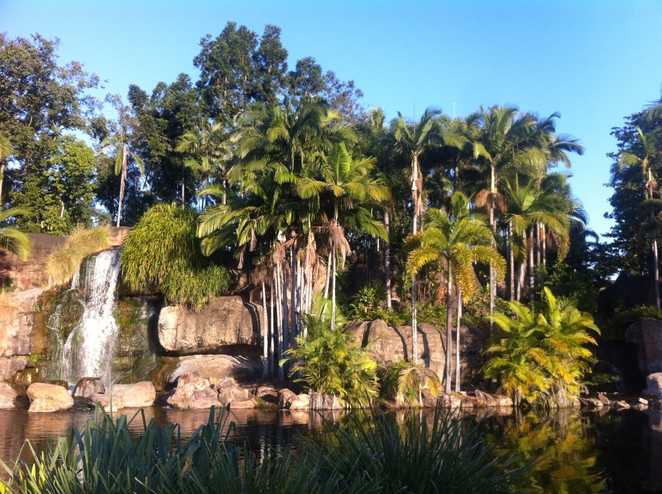rockhampton, kershaw gardens, botanic gardens, things to see