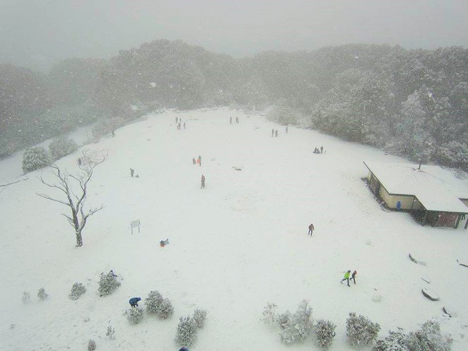 snowfields vic,snow fields victoria,where to go for snow in melbourne,victorian snowfields,victorian snow season,where to go to see snow in australia,where to go to see snow in victoria,skiing in Victoria,skiing holidays,snow holidays,mt donna buang