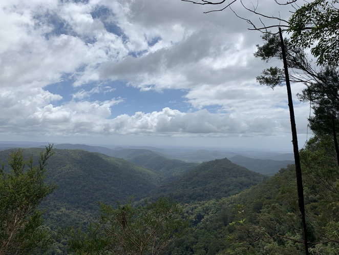 The Cream Track, Serenity Farm, Highland Cattle, Gold Coast Hinterland, Tallebudgera Valley, Springbrook Plateau, Goomoolahra Falls, English Garden Café, Hideaway Café, Hiking South East Qld and More, Hiking trails at Tallebudgera, Scenic Drive, Banana plantations, Permit, Bower Bird Nest