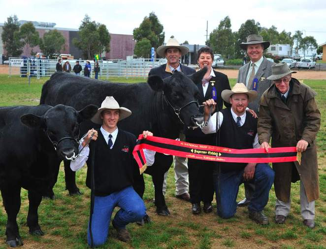 This image is from the Bendigo Show website.