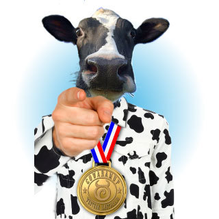 World Record Cow Muster