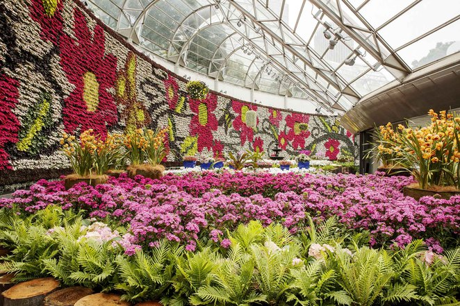 All About Flowers Plant Sale, Calyx, The Royal Botanic Gardens