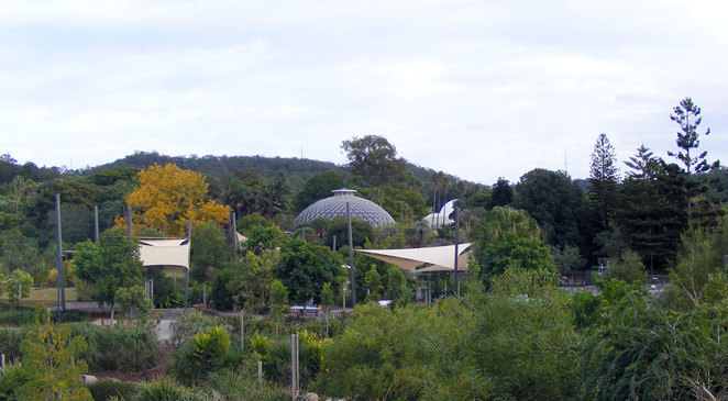 The Brisbane Botanic Gardens at Mt Coot-tha