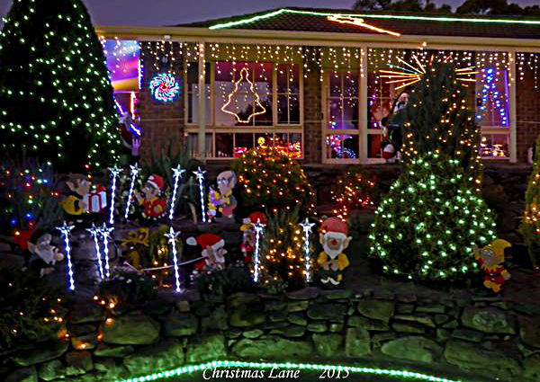 Christmas, lights, display, pegandbill, Lobethal, 2016, trees, garden