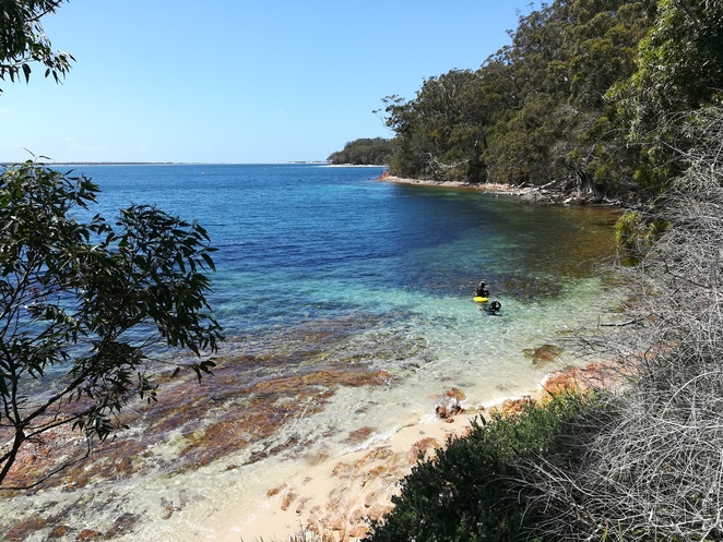 fly point, snorkelling, little beach, nelson bay, little nelson bay, park, bbq area, scuba diving, NSW, port stephens, day trips from newcastle,