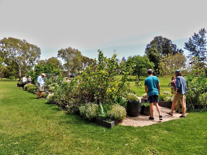 Free Guided Walks in Adelaide Parklands, free guided walks, adelaide parklands, parklands, adelaide, free, gold coin donation, appa, Adelaide Parkland Preservation Association, community garden