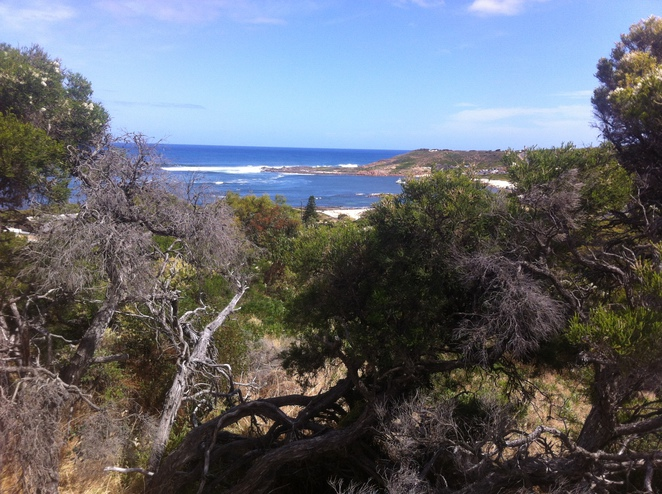 gracetown, south west, beach, western australia, lifestyle