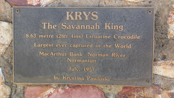 Krys, crocodile, Normanton, salt water crocodile, Queensland, The Savanna King