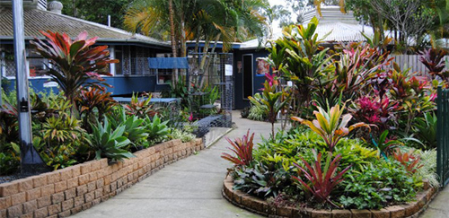 Noosa, RSPCA, plant and book sale, fundraiser, event, Sunshine Coast,