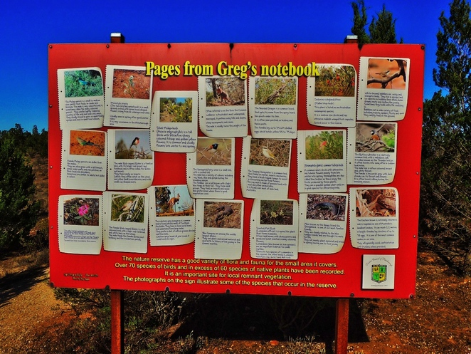 peterborough, flinders ranges, steamtown heritage rail centre, steamtown railway museum, peterborough attractions, railway history, motorcycle museum, peterborough art show, fun things to do, native wildlife