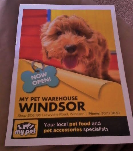 My pet warehouse windsor brisbane the opening of the new store solutioingenieria Images